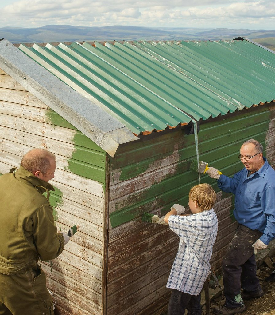 Painting the shed
