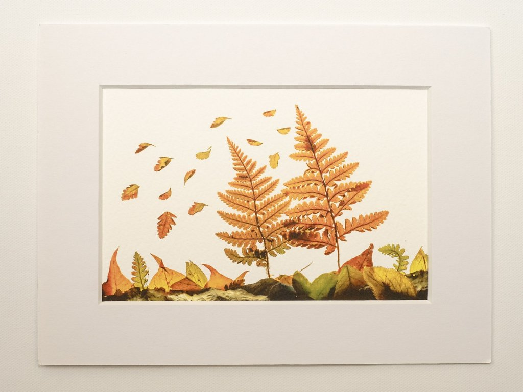 Lightbox autumn leaf arrangement from St Andrews Church, Moffat