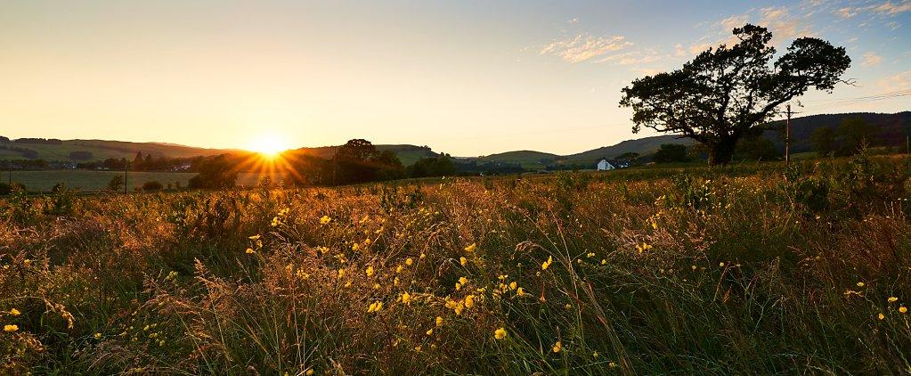 Midsummer sunset over Moffat