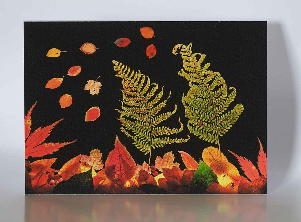 Autumn-Leaves-greetings-card.jpg