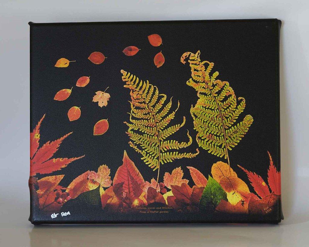 Autumn-Leaves-8-x-10-inch-canvas-print.jpg