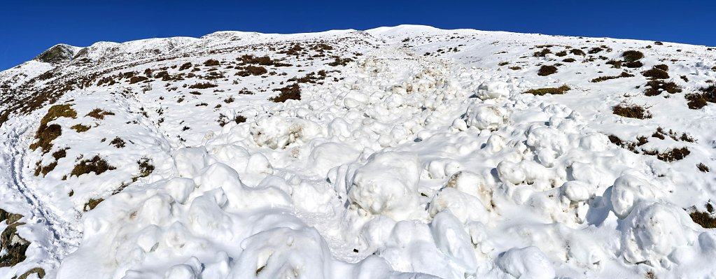 Avalanche across path up the hill