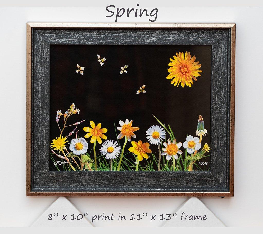 spring-8-x-10-framed.jpg