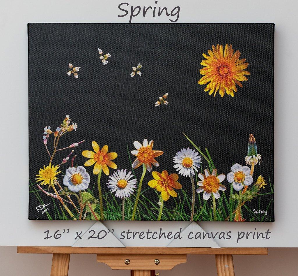 spring-16-x-20-canvas.jpg