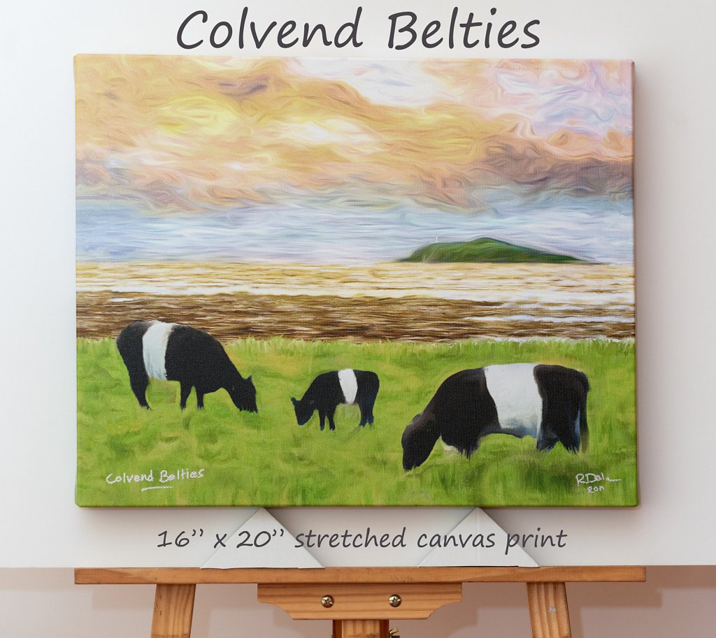 colvend-belties-16-x-20-canvas.jpg
